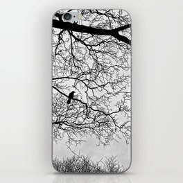 Natural Fractal and the Crow iPhone Skin