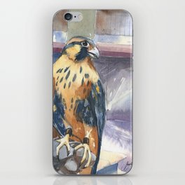 Two Baby Falcons iPhone Skin