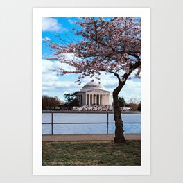 """Jefferson Memorial"" - DC Cherry Blossom Festival Art Print"
