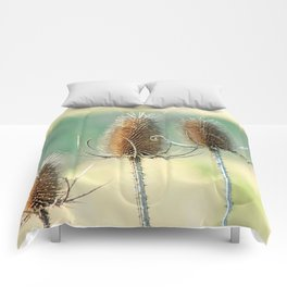 Look out - prickly plant ! Comforters