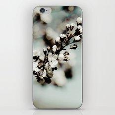 A Moment Awaits iPhone & iPod Skin