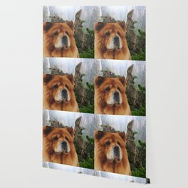 Dog Chow Chow Wallpaper