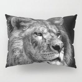 Proud Young Lion Pillow Sham