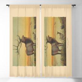 The Wapiti Deer Blackout Curtain