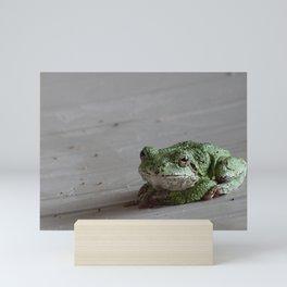 Smirking Grey Tree Frog Mini Art Print