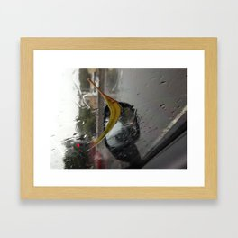 Leaf on Window Framed Art Print
