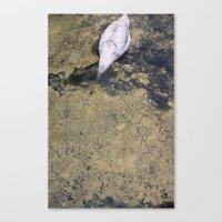 SWAN DIVING Canvas Print