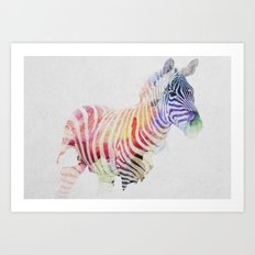 Colourful Zebra Art Print