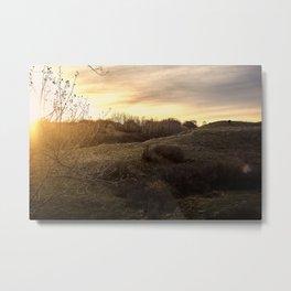 Golden sunset pasture. Metal Print