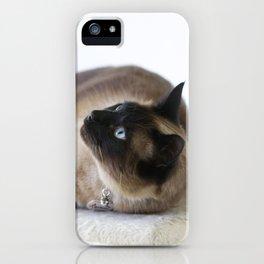 Beautiful Dreamer iPhone Case