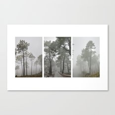 Dream forests. Triptych Canvas Print