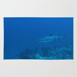 White-tip shark Rug