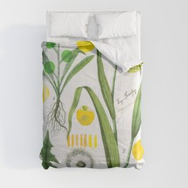 Botanical Series: Yellow Dandelion Comforters