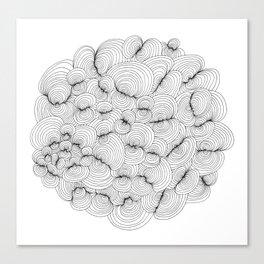 Sailor's Knots. Canvas Print