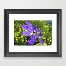 I like my tragedy to walk in purple and to be remote. Framed Art Print