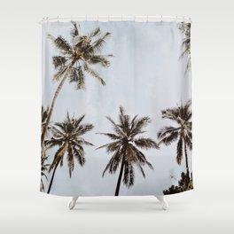 palm trees xiv / chiang mai, thailand Shower Curtain