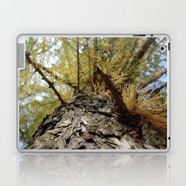 Siberian Larch Laptop & iPad Skin