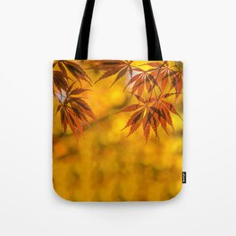 Maple in the gold fall Tote Bag