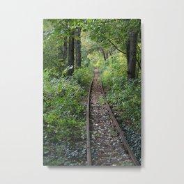 track Metal Print