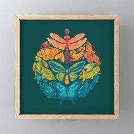 Bugs & Butterflies 2 Framed Mini Art Print
