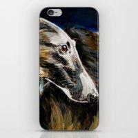 greyhound iPhone & iPod Skins featuring Greyhound Dog by BaconFactory