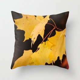 Yellow maple leaves Throw Pillow