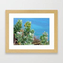 Caribbean Hues Framed Art Print