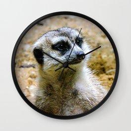 Meerkat vibin' Wall Clock