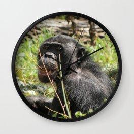 Grin Chin Chimp Wall Clock