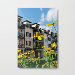 Rosemary Beach Blooms Metal Print