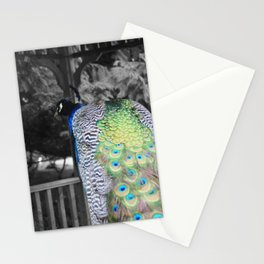 Fascinator Stationery Cards