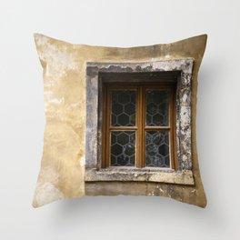 Mysterious Window II Throw Pillow