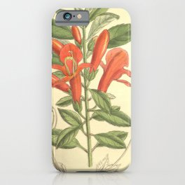 Flower 8225 columnea magnifica iPhone Case