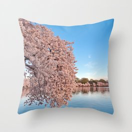 Washington DC Cherry Blossoms Throw Pillow