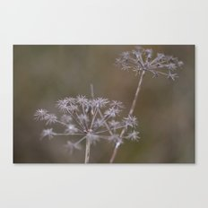Life's Wonderful Canvas Print