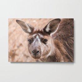 Australia Metal Print