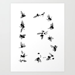 13 Flies Art Print
