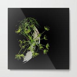 Herbs art 3 - Flowering dill Metal Print
