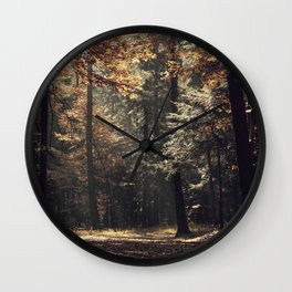 Autumn light and rays - horizontal Wall Clock