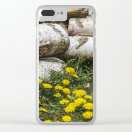 Dead Birch Tree And Living Dandelion Clear iPhone Case