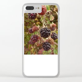 Autumn's Bounty Clear iPhone Case