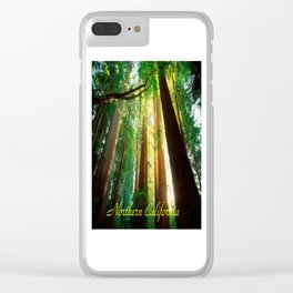 Northern California, Giant Redwoods and Redwood Trees. Clear iPhone Case
