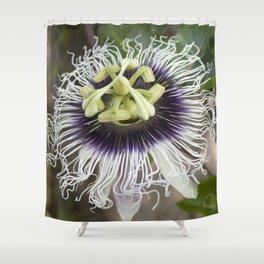 Passiflora edulis flavicarpa Shower Curtain