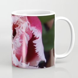 Fringed Tulip Coffee Mug