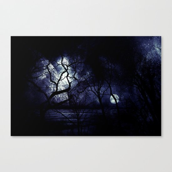 In the Darkness Canvas Print