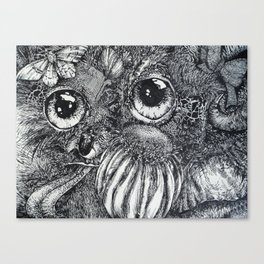 Pan Canvas Print