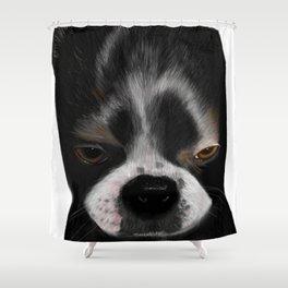 It Wasn't Me - Boston Terrier Puppy Shower Curtain