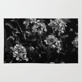 Stopping to Smell the Flowers at the Top of the Mountain Black & White Rug