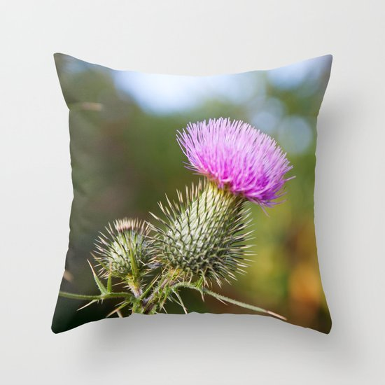 Bull Thistle in Mt. Rogers, Virginia Throw Pillow