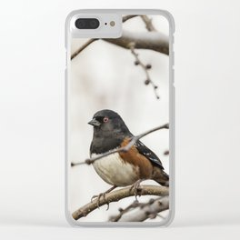 Spotted Towhee Clear iPhone Case